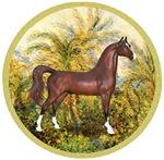 Brown Arabian Horse<br>In Palms