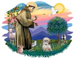St. Francis #2 / Shih Tzu (P)