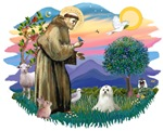St. Francis #2 &<br>Maltese (C)