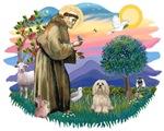 St. Francis #2 &<br> Lhasa Apso (#9)