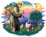 St. Francis #2 &<br> Australian Shepherd (merle)