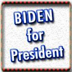 Elect Joe Biden T-shirts, Buttons, Stickers