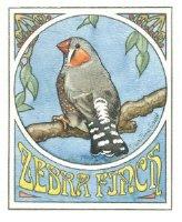 Zebra Finch Tee Shirts, mugs and more!