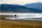 Couple and Seagull on Oregon Beach