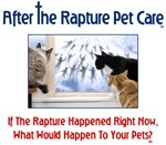 After The Rapture Pet Care Cats at Window with Que