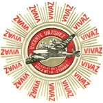 VIVAZ Airplane