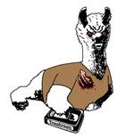 2013: Teen Llamawolf