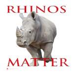 Rhinos Matter