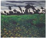 <i> The Flourishing Field  </i>