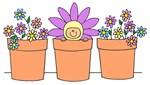 flower pot baby daisy apparel