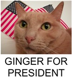 Ginger 4 Prez T-shirts & more