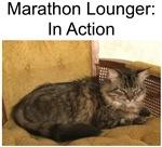 Marathon Lounger