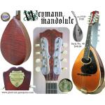 Antique Weymann Mandolute