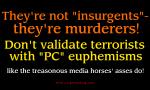 Insurgents?