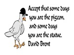 Be a pigeon