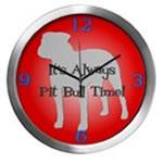 PIT BULL TIME Wall Clocks