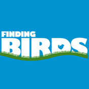 Finding Birds