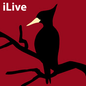 Ivory-billed Woodpecker: iLive