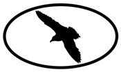 Gull Oval
