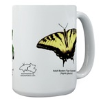 Baby Butterflies! (large mugs)
