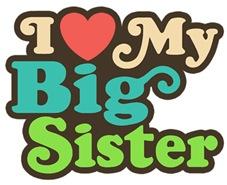 I Love My Big Sister t-shirts