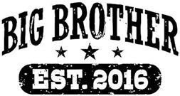 Big Brother Est. 2016 t-shirt