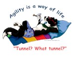 Agility Is a Way of Life