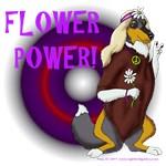 Flower Power Collie
