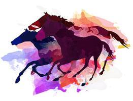 Mustangs- The Wild Bunch