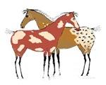 Two Horses Appaloosa & Paint