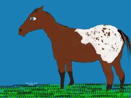 Whimsy Horses