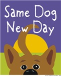 Same Dog, New Day