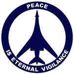 B-1B - Peace Is Eternal Vigilance