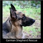 Love is GSD Rescue- Adult Male