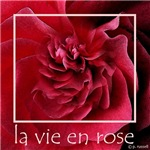 Fine Art- la vie en rose