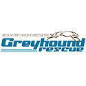 Greyhound Rescue