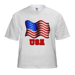 Basic American Flag and USA