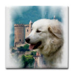 Great Pyrenees Castle