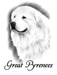 Great Pyrenees Headstudy