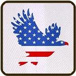 Patriotic Eagle July 4th