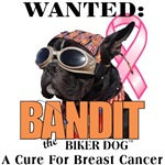 Help find a CURE for Cancer