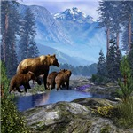 Mountain Grizzly Bears
