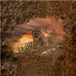 Sunset Cougar