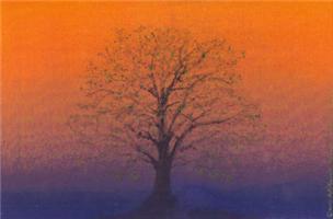 07.spring equinox tree?