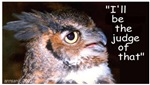 OWL says