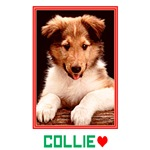 Collie Puppy T-shirts & Gifts