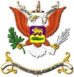 Army - Regimental Colors - 401st Civil Affairs Bn