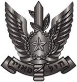 Israel -  Air Force Hat Badge - No Text