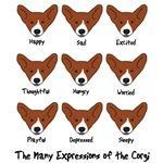 Corgi Expressions