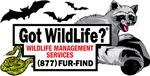 Got Wildllife? LLC